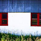 red-framed windows by Lynne Prestebak