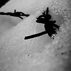 Wire and Ice - Dachau by Boxx