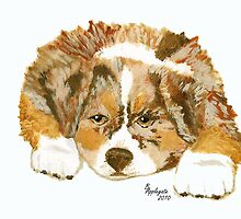 Puppy Breath #3 ~ Australian Shepherd Puppy ~ Oil Painting by Barbara Applegate