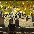 Cemetery in Moosup by Debbie Robbins