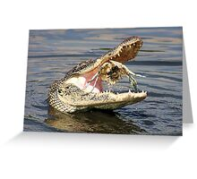 Alligator Catching and Cracking a Crab Greeting Card