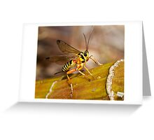 Ichneumon Wasp Greeting Card