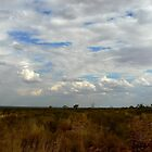 Northern Territory Clouds by Virginia McGowan