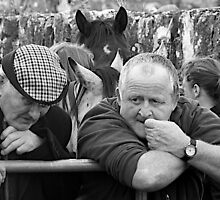 Horse traders, Ireland by Clive Temple