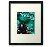 The onion Framed Print