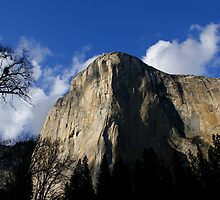 Oh Captain My Captain - Yosemite by NaturalEsthetic