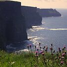 Cliffs of Moher by Esther  Moliné