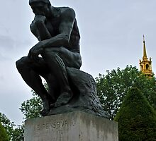 The Thinker by Laura Sanders