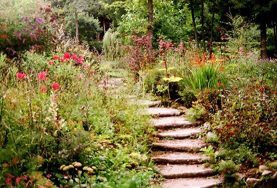 Quot Romantic Garden 1 Quot By Steppeland Redbubble
