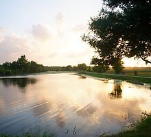 Sunset over the lake - Brazos Bend State Park by Ann Reece