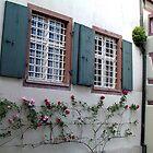 """""""Rose cottage"""" by Nancy Richard"""