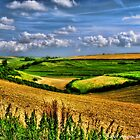 Dorset Farmland by Aggpup