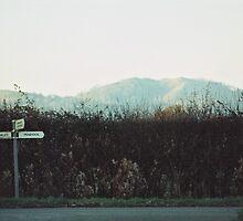 Roadsigns, Redmarley d'Abitot  by RHJTR