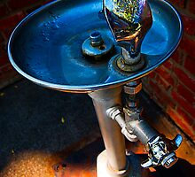 Drinking Fountain by Robert Meyer
