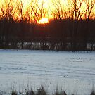 Beautiful sunset photo by Dan Wagner