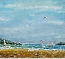 gulls surf and sails by Raymond  Hedley