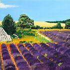 Lavender Field  by Heberto   G. Cavazoz