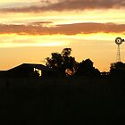 Aussie farm at sunset by bassgirl1970