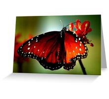 ~Just like a butterfly... Greeting Card