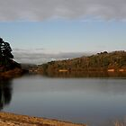 Bleak winter over Loe Pool by Christine Hosey