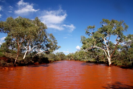 Pilbara Creek by Ngarluma78