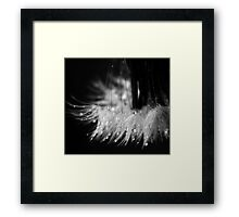 i wish Framed Print