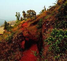 Carving a Path (Karnataka, India) by rocamiadesign