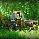 International Harvester Backhoe by Debbie Robbins