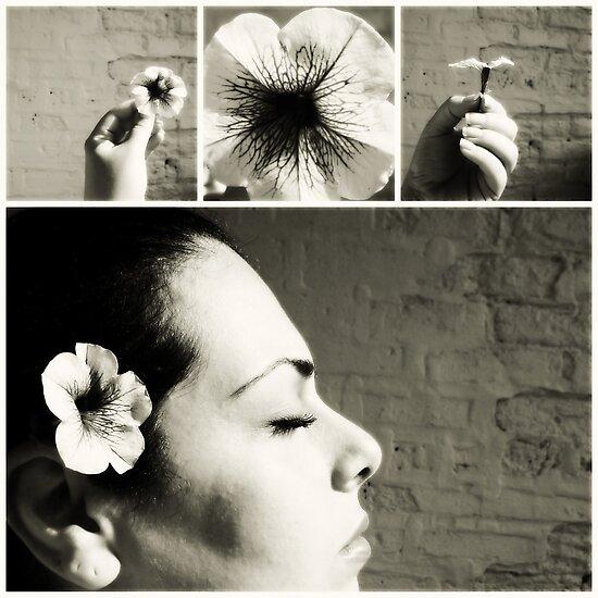 a flower. by Angel Warda