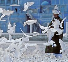 Man and a white dove, Afghanistan by yoshiaki nagashima