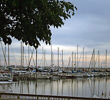 Marina Morning by kkphoto1