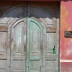 Distressed Door, Antigua, Guatamala by Lyn Fabian