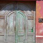 Distressed Door, Antigua, Guatamala by Lyn Fabian