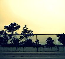 overlooking more of the same.... by afure