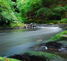 River North Esk, Roslin Glen by Vic Sharp