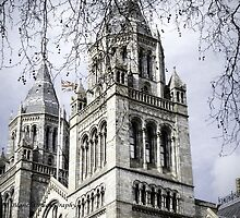 Londres by Blanchi-photos