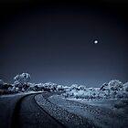 Once in a Blue Moon by Pene Stevens
