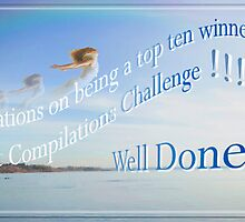DAC Challenge Banner - Top 10 Winner by Fiona  Jones