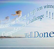 DAC Challenge Banner - Top 10 Winner by Fiona  Jones