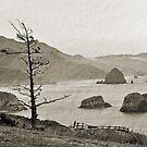 Oregon Coast by Bob Hortman