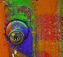 You Wanted the Door Painted What Color? by Bob Hortman