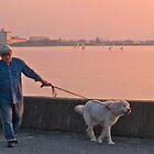 Japanese gentleman walking his dog. by johnrf