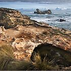 Winter View Towards Antarctica.. by Dohmnuill