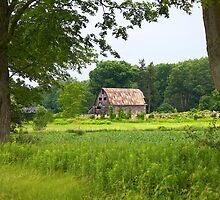 Old barn set back in a field by RandiScott