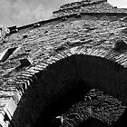 Ruins of Timoleague by Nicole Shea