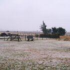 Snowy Day by DCFotos