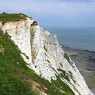 Coastal Headland of the South Downs, Beachy Head, England 2010 by J.D. Grubb