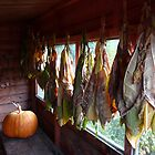Tobacco drying. by romaro