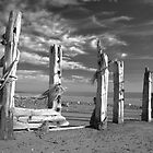 Coastal scene at Spurn Point by Dave McAleavy