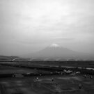 In Front of Mt Fuji by berndt2